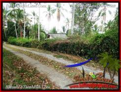 Beautiful PROPERTY LAND FOR SALE IN TABANAN BALI TJTB217