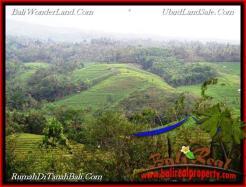 Affordable TABANAN BALI 10,700 m2 LAND FOR SALE TJTB219
