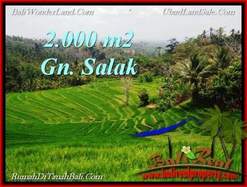 Exotic 2,000 m2 LAND SALE IN TABANAN BALI TJTB220