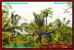 Affordable PROPERTY TABANAN LAND FOR SALE TJTB235