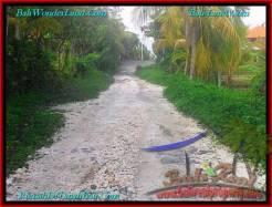 Exotic PROPERTY 980 m2 LAND IN Tabanan Selemadeg FOR SALE TJTB244