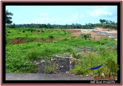 FOR SALE Affordable LAND IN Tabanan Selemadeg BALI TJTB245