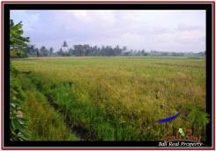 Affordable PROPERTY TABANAN LAND FOR SALE TJTB247