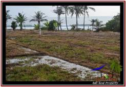 FOR SALE Magnificent PROPERTY LAND IN TABANAN TJTB249