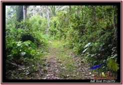 Exotic 18,200 m2 LAND SALE IN TABANAN BALI TJTB254