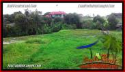 LAND FOR SALE IN Canggu Batu Bolong BALI TJCG198