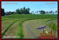 FOR SALE Affordable LAND IN Tabanan Selemadeg BALI TJTB268