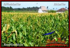 Affordable TABANAN BALI 2,700 m2 LAND FOR SALE TJTB286