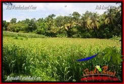 FOR SALE Beautiful PROPERTY 8,000 m2 LAND IN Tabanan Selemadeg TJTB287