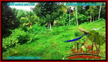 Magnificent LAND IN TABANAN FOR SALE TJTB274