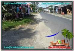 FOR SALE Exotic LAND IN Tabanan Kota BALI TJTB296