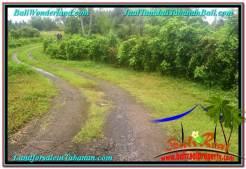 FOR SALE LAND IN TABANAN BALI TJTB312