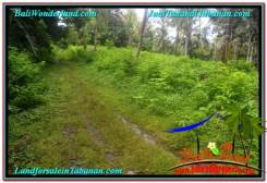 Exotic PROPERTY LAND IN TABANAN BALI FOR SALE TJTB313