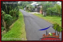 FOR SALE Beautiful 20,000 m2 LAND IN Tabanan Penebel TJTB315