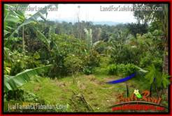 FOR SALE Beautiful 20,000 m2 LAND IN Tabanan Penebel TJTB315