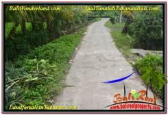 FOR SALE Beautiful PROPERTY 1,000 m2 LAND IN TABANAN TJTB307
