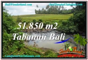 Exotic PROPERTY 51,850 m2 LAND FOR SALE IN Tabanan Selemadeg TJTB289