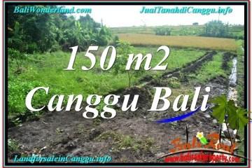 LAND FOR SALE IN Canggu Pererenan TJCG213