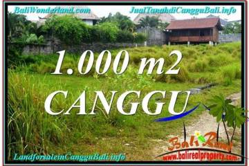 Affordable LAND IN Canggu Pererenan FOR SALE TJCG214