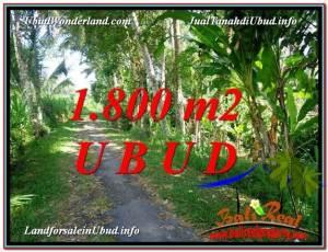 Affordable UBUD BALI 1,800 m2 LAND FOR SALE TJUB597