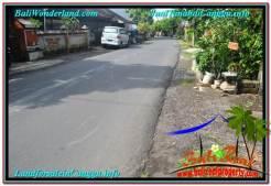 FOR SALE Beautiful PROPERTY LAND IN Canggu Pererenan BALI TJCG213