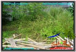 Beautiful 410 m2 LAND SALE IN CANGGU TJCG216