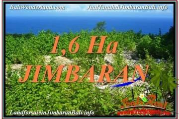 Exotic 16,000 m2 LAND FOR SALE IN Jimbaran Uluwatu TJJI112