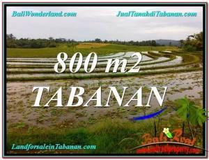 Affordable LAND SALE IN Tabanan Selemadeg TJTB324