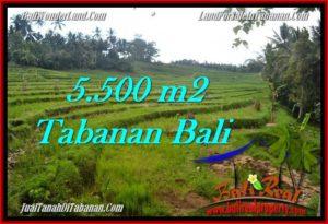 Affordable TABANAN BALI 5,500 m2 LAND FOR SALE TJTB280