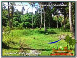 Tabanan Selemadeg BALI 11,600 m2 LAND FOR SALE TJTB327