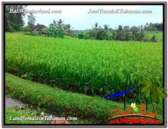Exotic PROPERTY LAND FOR SALE IN TABANAN BALI TJTB328