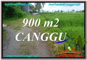 Beautiful PROPERTY CANGGU BALI 900 m2 LAND FOR SALE TJCG215