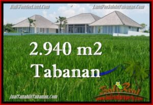 Magnificent PROPERTY Tabanan Selemadeg 2,940 m2 LAND FOR SALE TJTB265