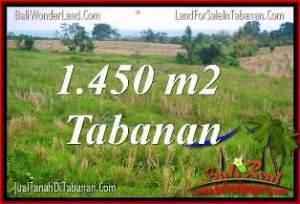 Beautiful 1,450 m2 LAND FOR SALE IN Tabanan Selemadeg TJTB343