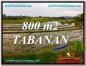 FOR SALE Exotic PROPERTY LAND IN Tabanan Selemadeg BALI TJTB324