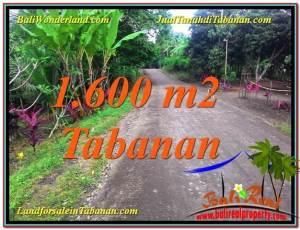 Beautiful PROPERTY LAND FOR SALE IN Tabanan Selemadeg BALI TJTB337