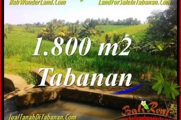 Affordable PROPERTY LAND SALE IN TABANAN TJTB338