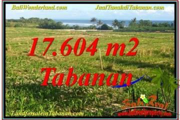 17,604 m2 LAND IN Tabanan Kerambitan BALI FOR SALE TJTB342