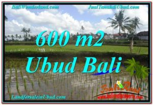 FOR SALE Beautiful 600 m2 LAND IN UBUD BALI TJUB621