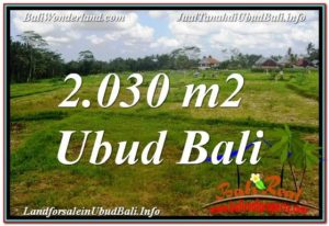 Affordable PROPERTY 2,030 m2 LAND FOR SALE IN Ubud Tegalalang TJUB623