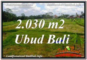 Affordable PROPERTY 2,030 m2 LAND FOR SALE IN Ubud Tegalalang TJUB623