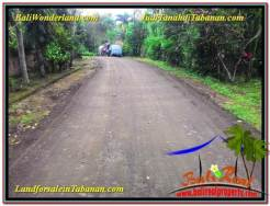 FOR SALE Exotic 1,600 m2 LAND IN Tabanan Selemadeg BALI TJTB337