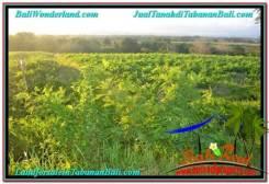 LAND IN Tabanan Selemadeg FOR SALE TJTB339