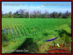 Affordable PROPERTY 4,000 m2 LAND IN TABANAN FOR SALE TJTB352