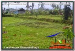 FOR SALE Affordable LAND IN Tabanan Penebel BALI TJTB336