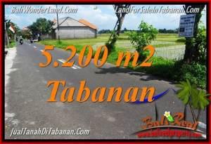 DIJUAL MURAH TANAH di TABANAN BALI 5,200 m2 di Tabanan Kediri
