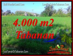 Magnificent PROPERTY 4,000 m2 LAND SALE IN TABANAN TJTB352