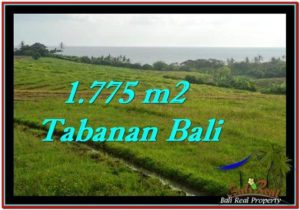 Magnificent PROPERTY 1,775 m2 LAND SALE IN Tabanan Selemadeg TJTB251