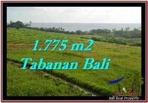 Magnificent PROPERTY 1,775 m2 LAND SALE IN Tabanan Selemadeg TJTB251