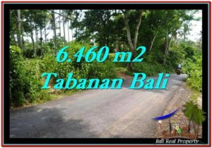 6,460 m2 LAND IN TABANAN BALI FOR SALE TJTB256
